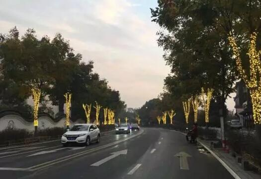 led stree light and tree decoration